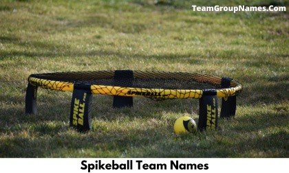 Spikeball Team Names